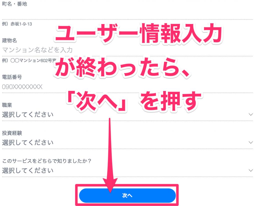 THEOのユーザー登録を入力する2